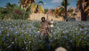 Assassin's Creed® Origins 20171101134056