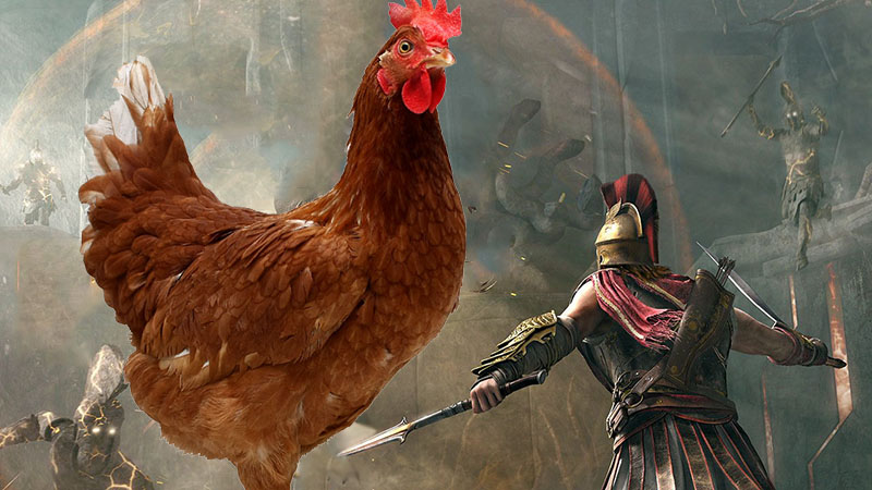 Assassins Creed Odyssey Kurczak