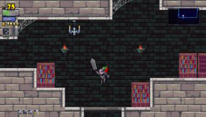 Rogue Legacy (11)