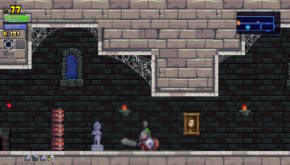 Rogue Legacy (13)