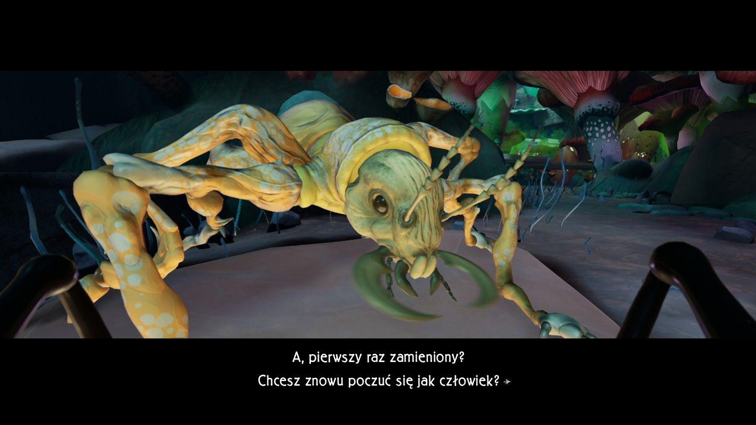 Metamorphosis Screen3