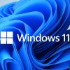Windows 11 (1)