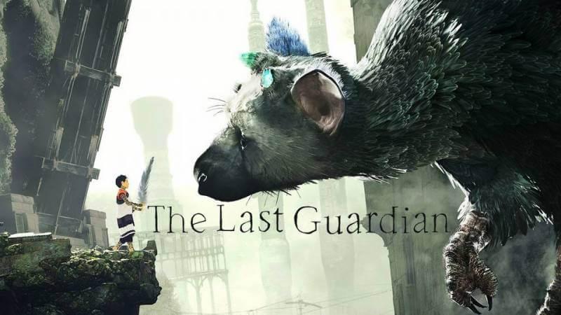 W pierwszym tygodniu po premierze sprzedano ponad pół miliona egzemplarzy The Last Guardian