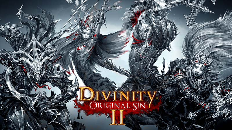 divinity original sin 2 0011 pc games 1